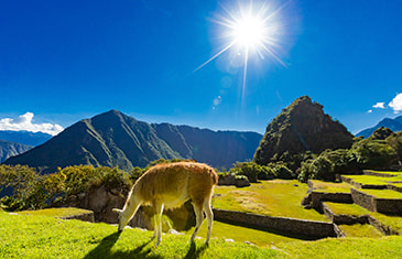 trip to Machu Picchu 5 days