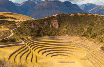 MARAS & MORAY HALF DAY TOUR