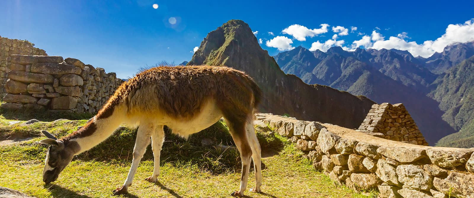 machu picchu one of the wonders of the world